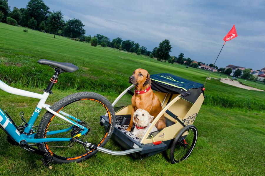 Vozík a kočárek za kolo pro psa